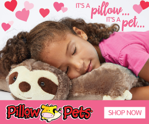 The concept for these lovable companions is the brainchild of a San Diego-based mother of two, Jennifer Telfer. She came up with the idea of Pillow Pets when her oldest son, then seven, flattened out one of his stuffed animals in order to sleep on it.