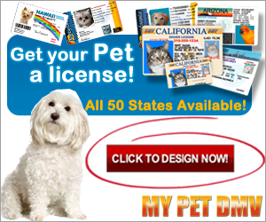 The ID that looks like a Driver's License for all 50 USA States and Canada. With our 24 Hour printing guarantee, your loved cat, dog, or any pet will get an authentic State Dog ID collar tag, along with (3) Personalized Key-Chain IDs usually the same week you order. PLUS...additional pets only $9.95 at checkout! Get the most unique Personalized Pet ID Tag available.