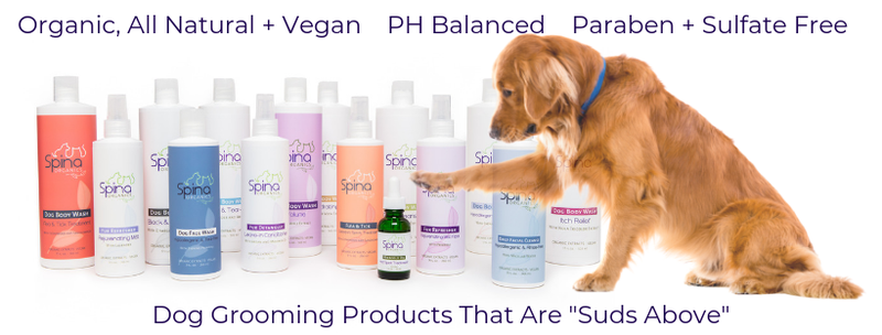 As one of Beverly Hills top hairstylists, Mauro Spina knows a thing or two about hair care. When his dog Tina suffered from alopecia and pimples, Mauro's goal was simple-- create a line of healthy, organic, and natural pet grooming products as an alternative to the chemical treatments and injections that vets proposed